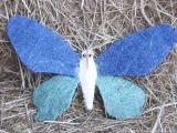 Sisal Schmetterling Groß Blau
